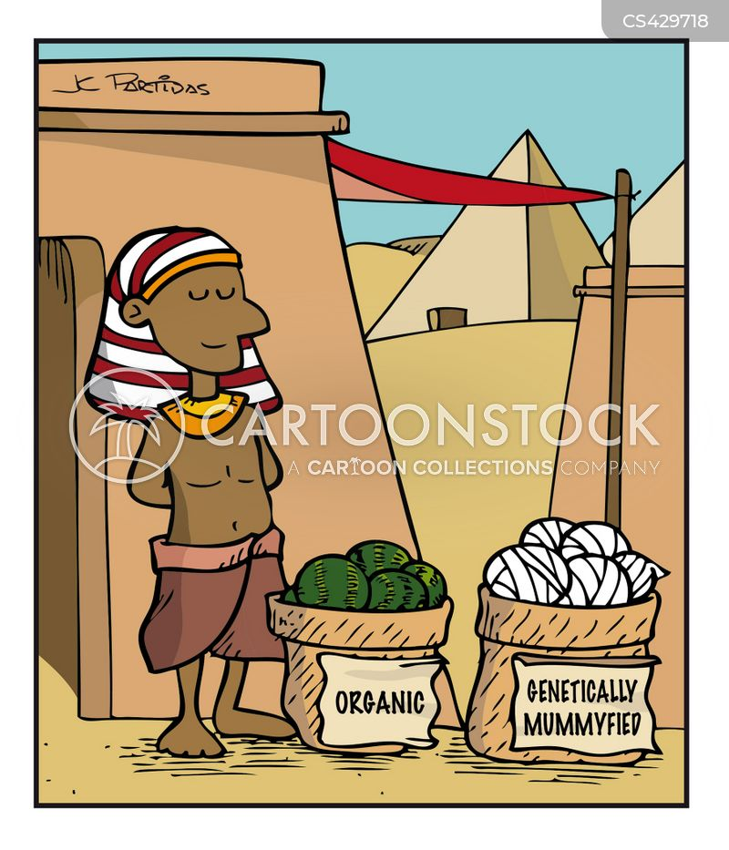 Funny Pictures About Egypt: Mummifications Cartoons And Comics
