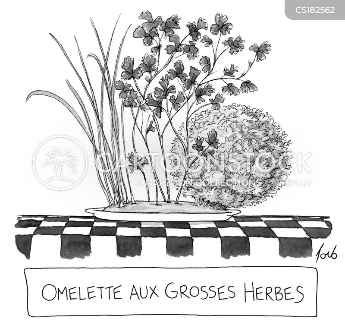 herb cartoon