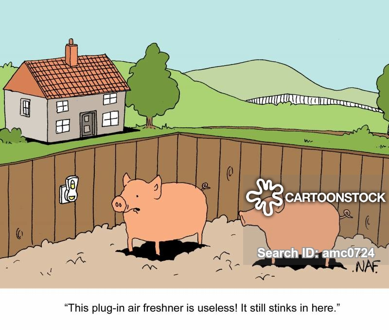 pig sties cartoon