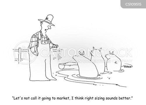 pork products cartoon
