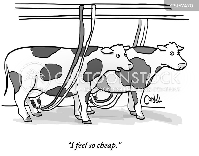 price of milk cartoon