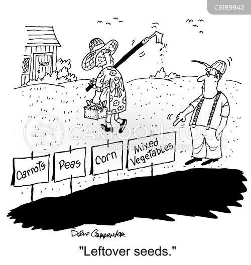 seed cartoon