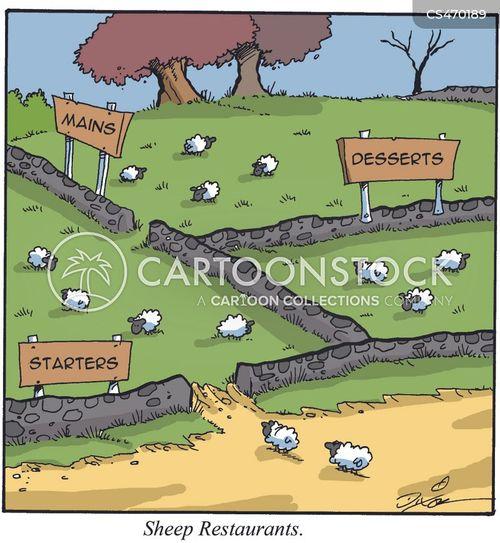 main cartoon