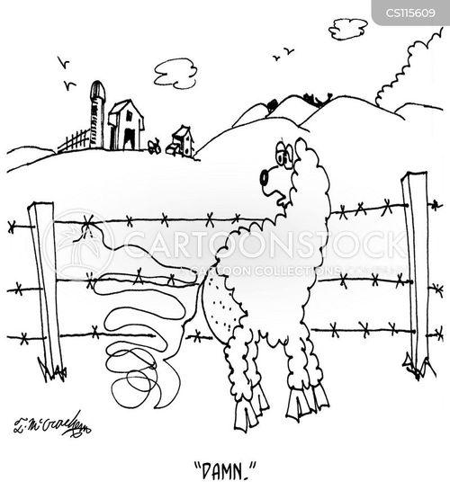 unravelled cartoon