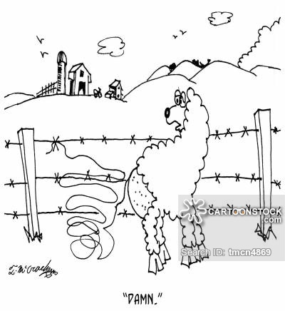 Barbed Wire Cartoons and Comics - funny pictures from CartoonStock