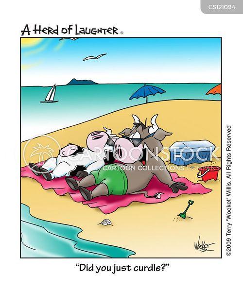 curdles cartoon