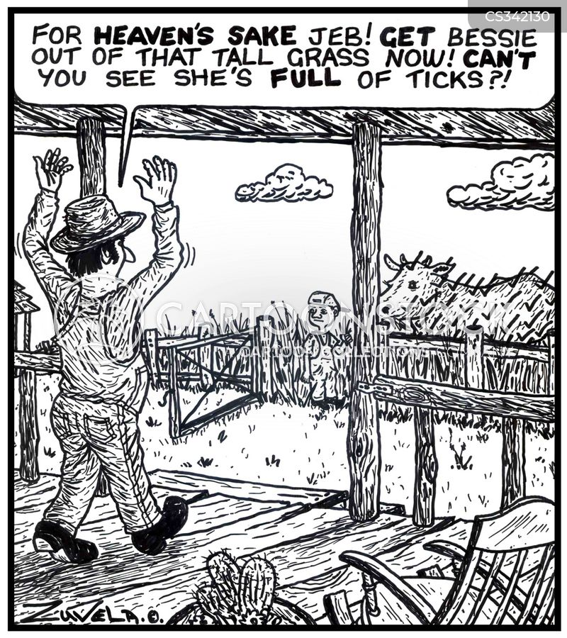 cattle farmers cartoon