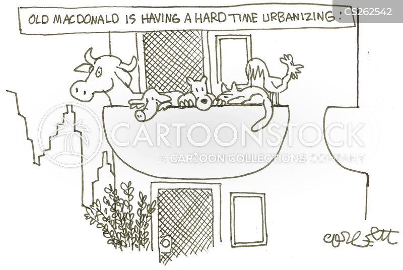 Apartment Living Cartoon 9 Of 12