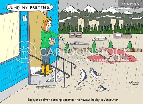 fish farms cartoon