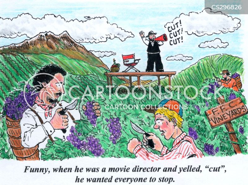 motion pictures cartoon