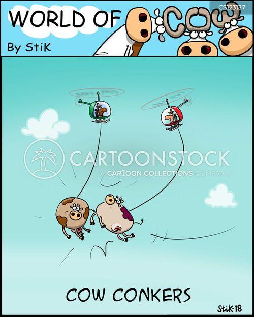 conkers cartoon