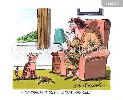 cat present cartoon