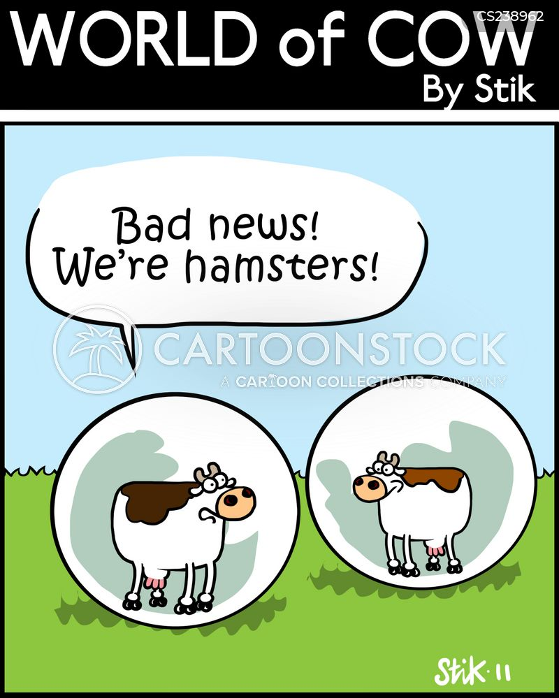 hamster balls cartoon