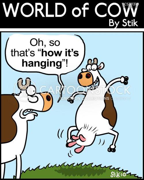 well hung cartoon