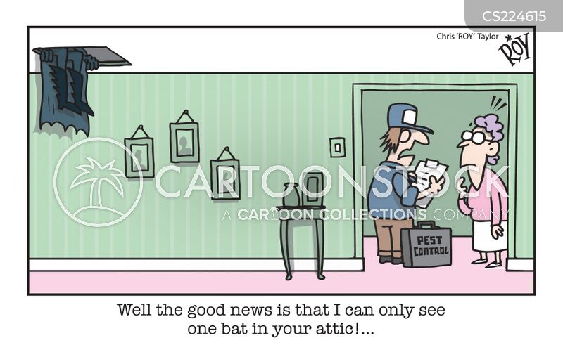 attic cartoon