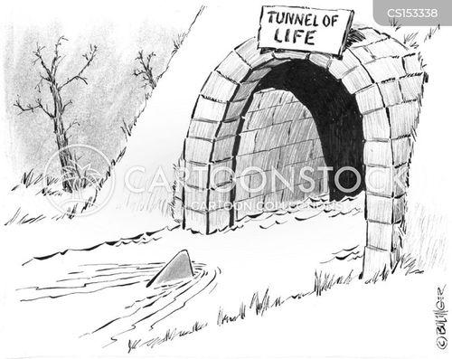 foreshadowing cartoon