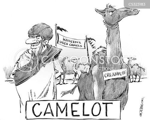 used car dealership cartoon