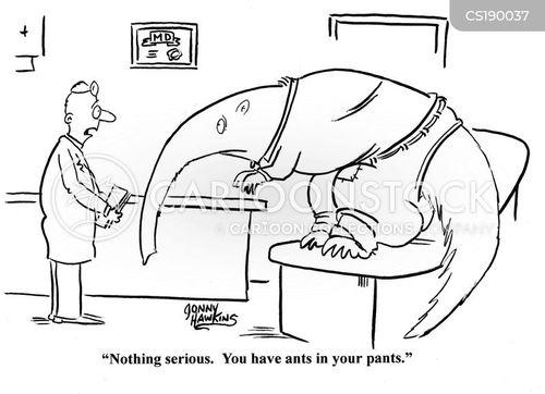 zoological cartoon
