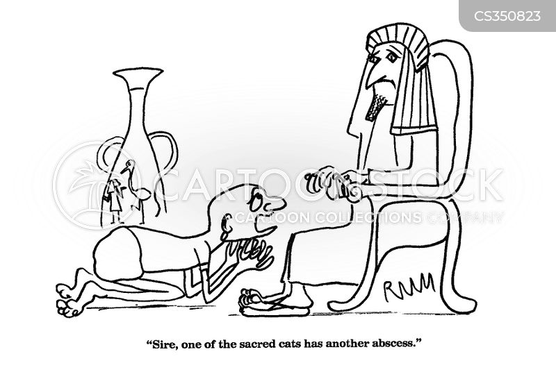 sacred animal cartoon