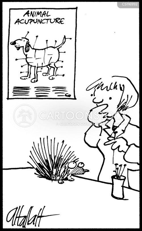 acupunture cartoon