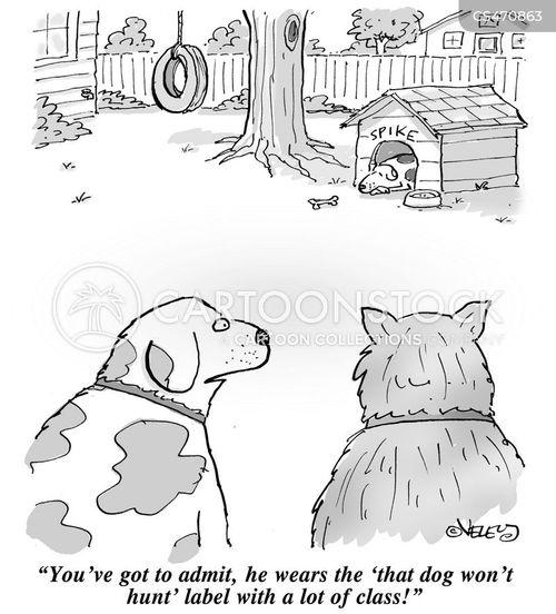 aphorisms cartoon