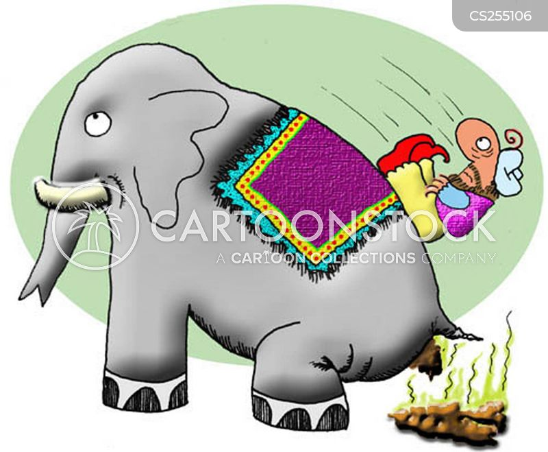 elephant dung cartoon