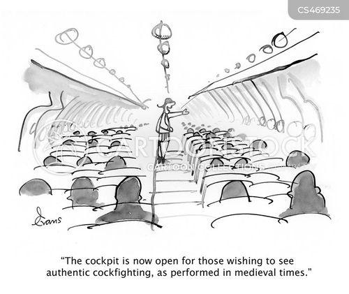 cockfight cartoon
