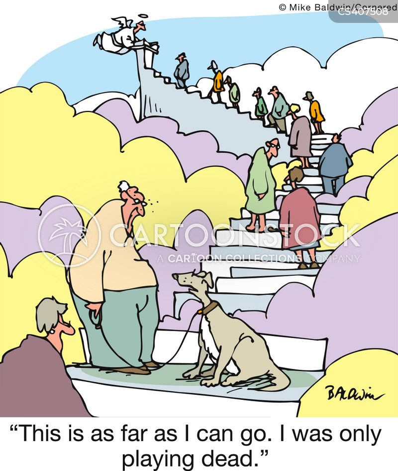 loyal companions cartoon