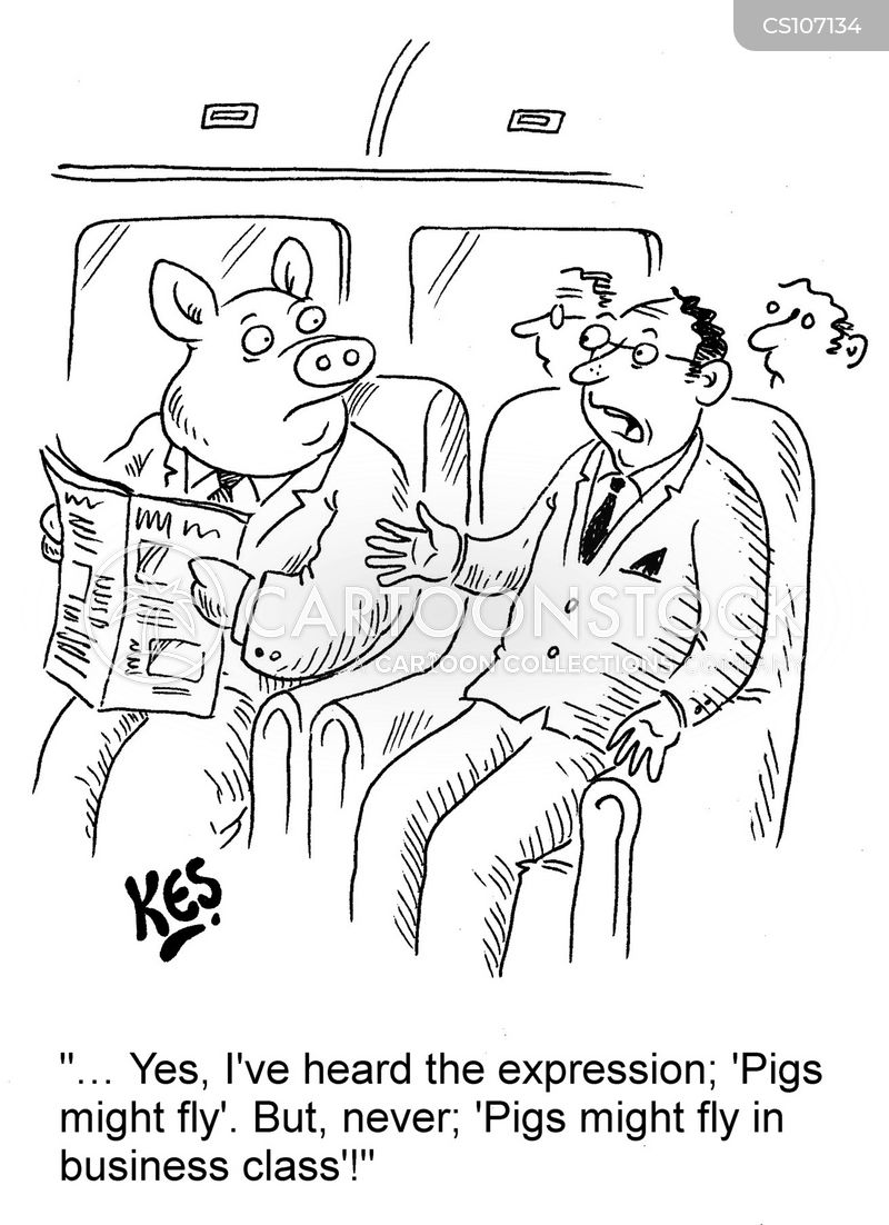 pigs might fly cartoon