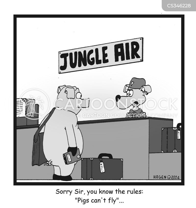 jungle air cartoon