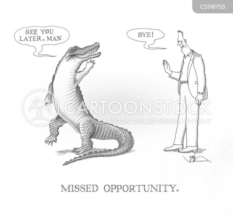 missed opportunity cartoon
