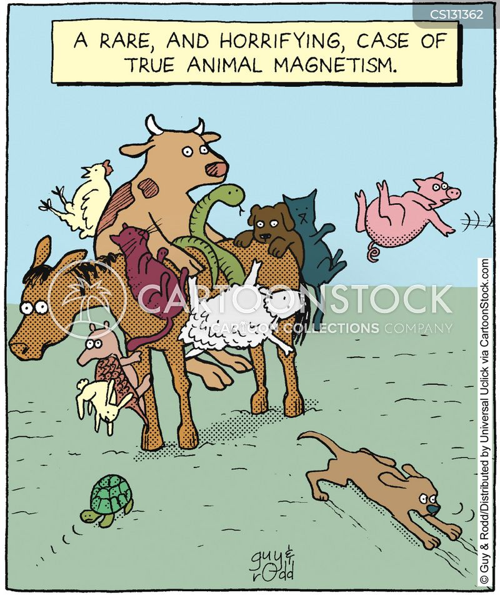 animal magnetism cartoon
