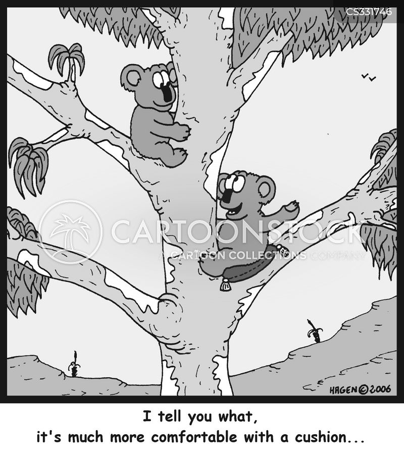 eucalyptus cartoon