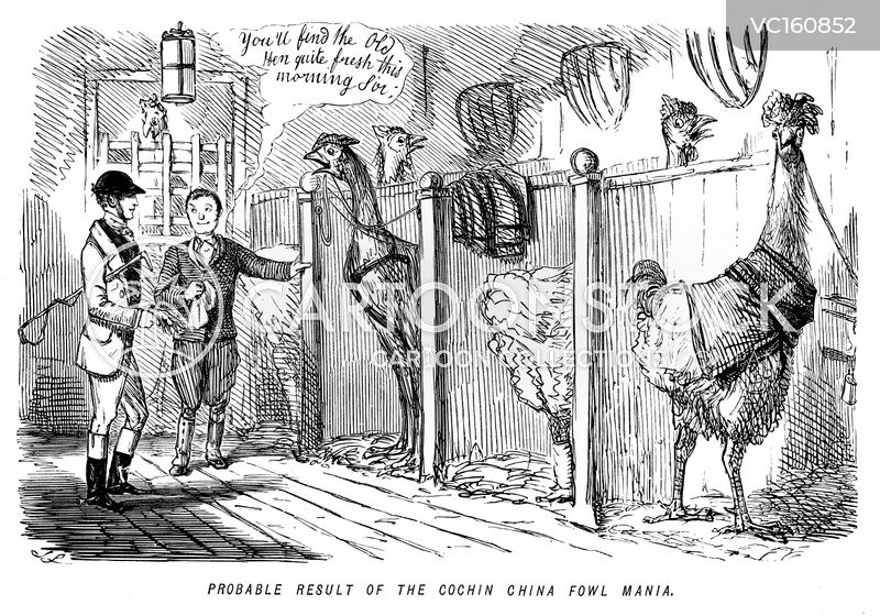 Poultry cartoons, Poultry cartoon, funny, Poultry picture, Poultry pictures, Poultry image, Poultry images, Poultry illustration, Poultry illustrations