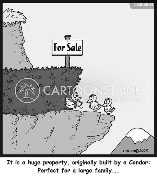 house hunters cartoon