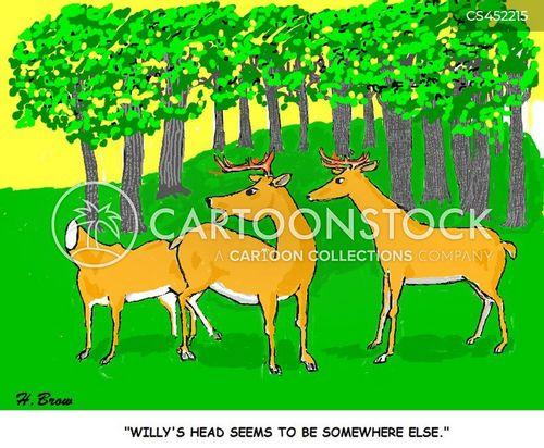 wall mount cartoon