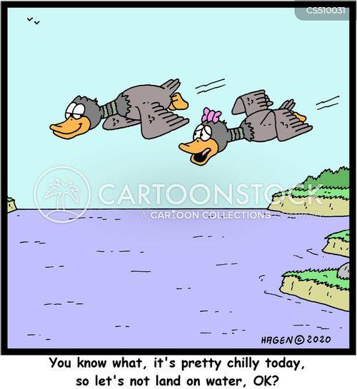 stay dry cartoon