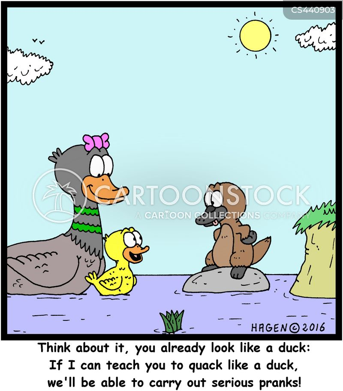 animal life cartoon
