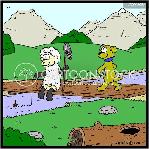 fishing expeditions cartoon