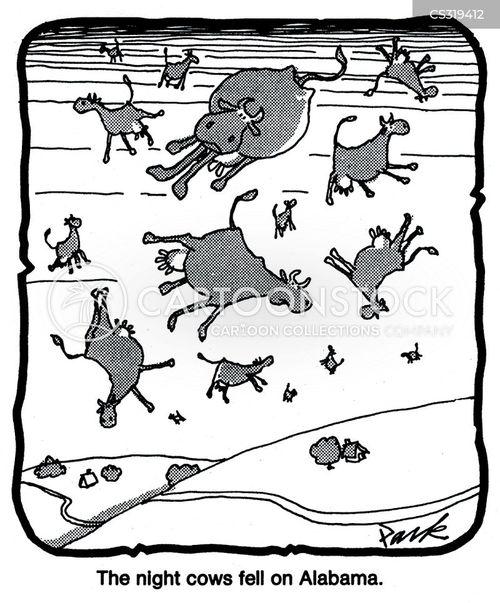 phenomenon cartoon