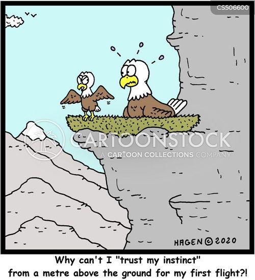 first flights cartoon
