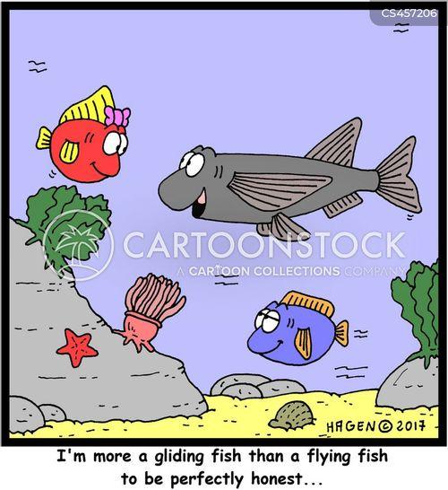 flying fish cartoon