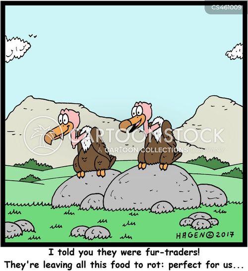 rot cartoon