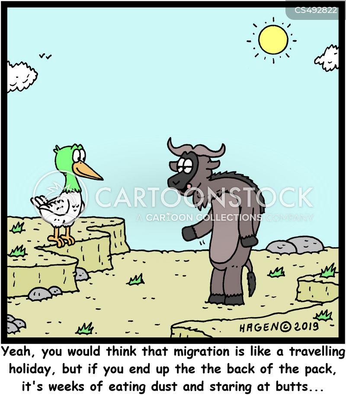 walking vacations cartoon