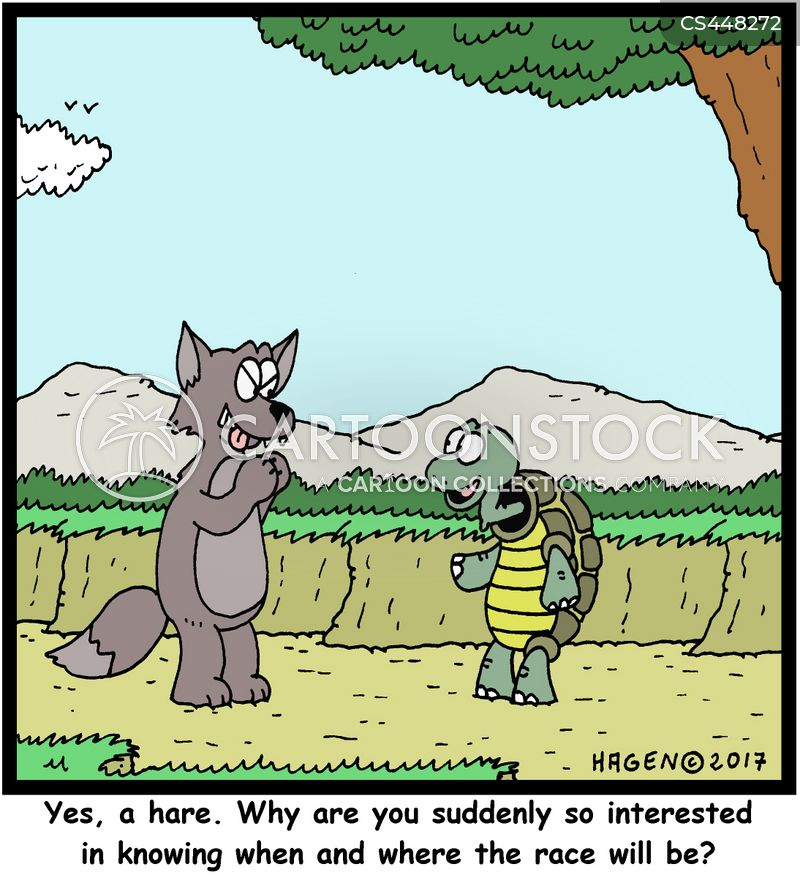 the tortoise and the hare cartoon