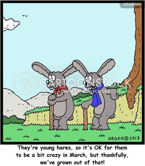 grown cartoon