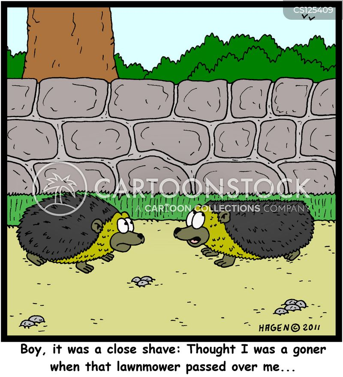 close shave cartoon