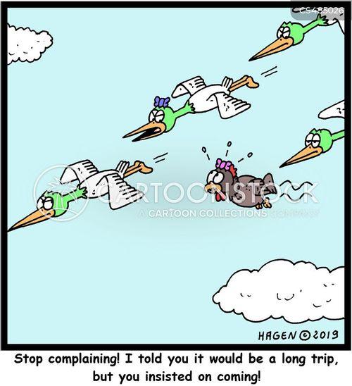 bird migrations cartoon