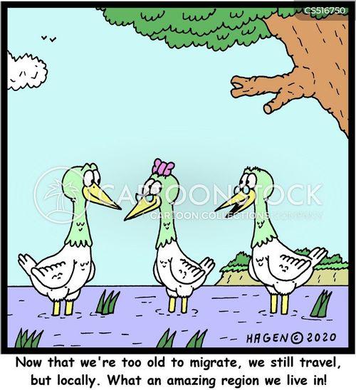 locally cartoon