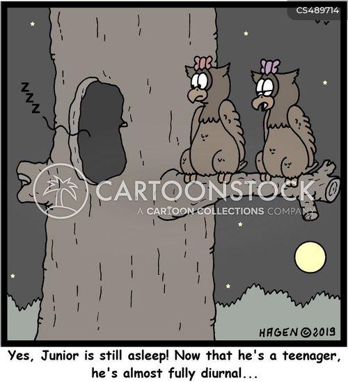 diurnal cartoon